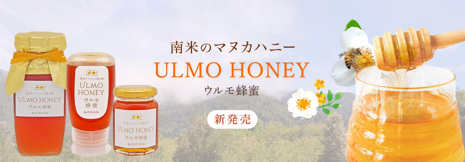 ウルモ蜂蜜(南米のマヌカハニー)