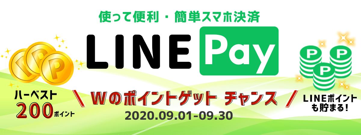 北海道復興応援企画亜麻仁油